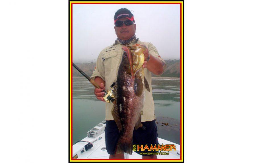 "Big Hammer 9"" Sledgehammer Swimbait - Silver Shad (2pcs)"