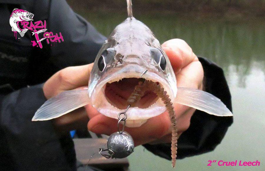 """Crazy Fish 2"""" Cruel Leech - 50 Pink Flamingo (8pcs)"""