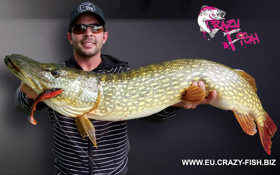 """Crazy Fish 5"""" Tough - 10D Natural (5pcs)"""