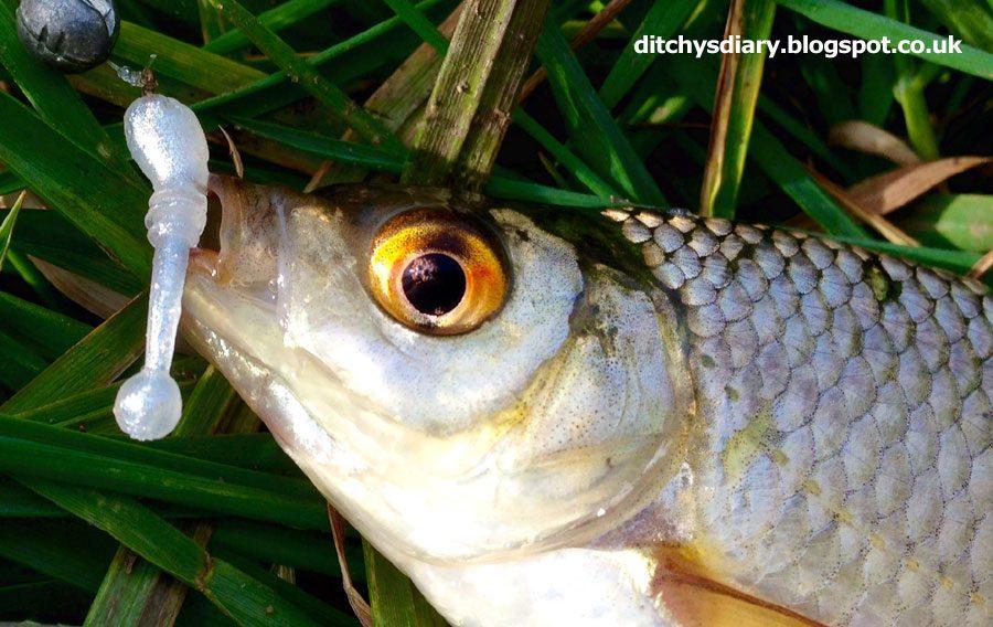 "Crazy Fish 0.8"" Whitebait - 6 Chartreuse & 49 Snow White (20pcs)"