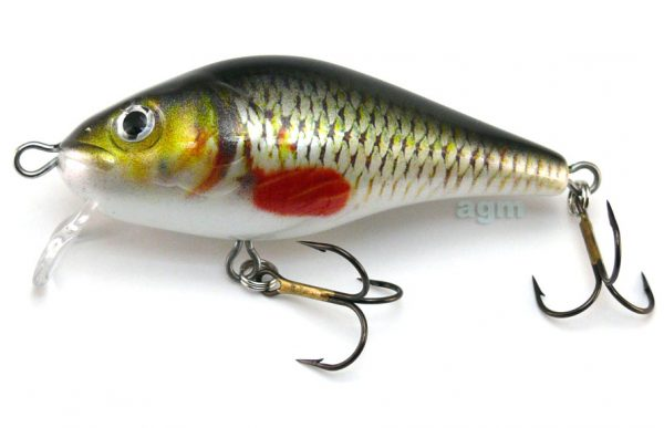 Hester Big Shallow Shad - Roach