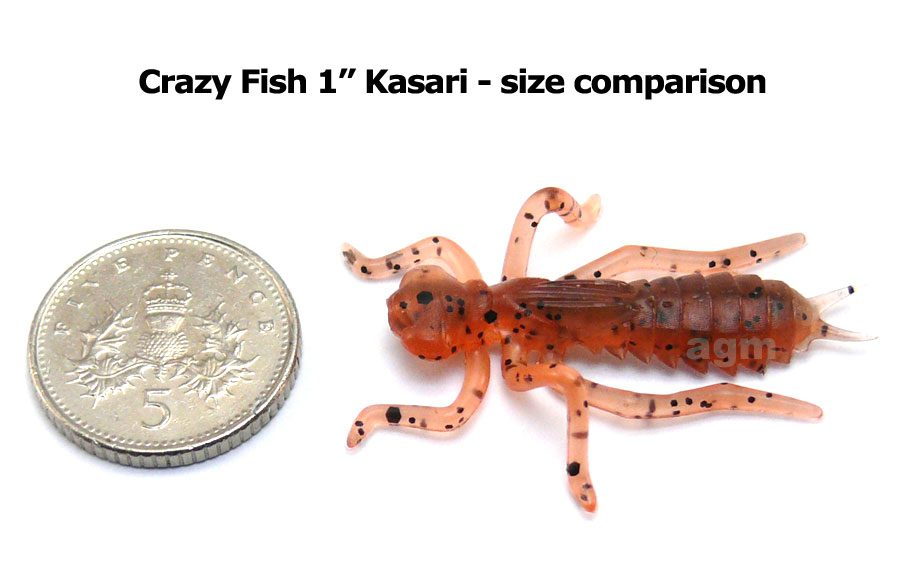 "Crazy Fish 1"" Floating Kasari - 8D Orange Coffee (8pcs)"