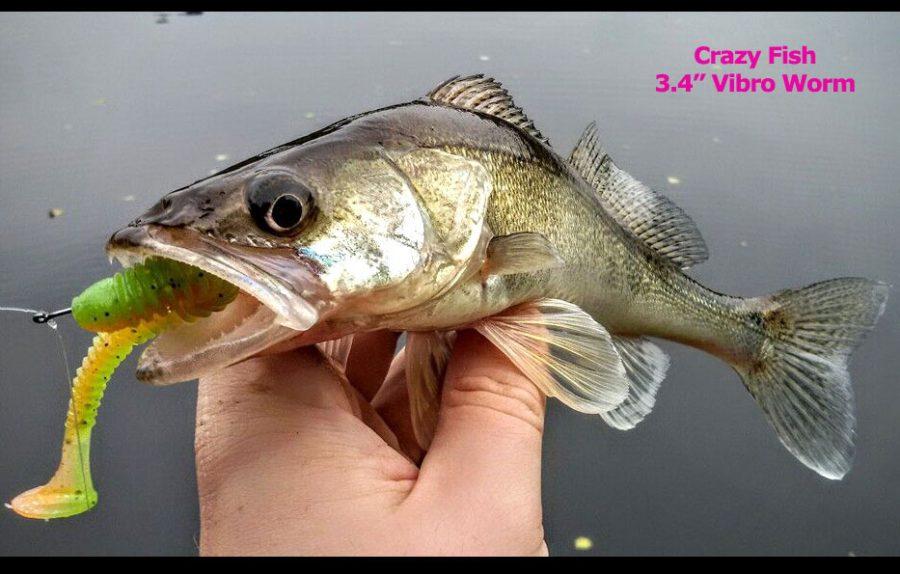 """Crazy Fish 3.4"""" Vibro Worm - 6 Chartreuse (5pcs)"""